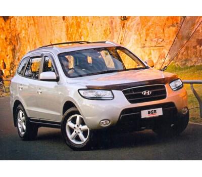 Защита фар Hyundai Santa Fe 2006-2011 карбон EGR (214050CF)