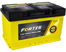 Аккумуляторная батарея 100 Ah FORTIS (0) Euro L4 короткий